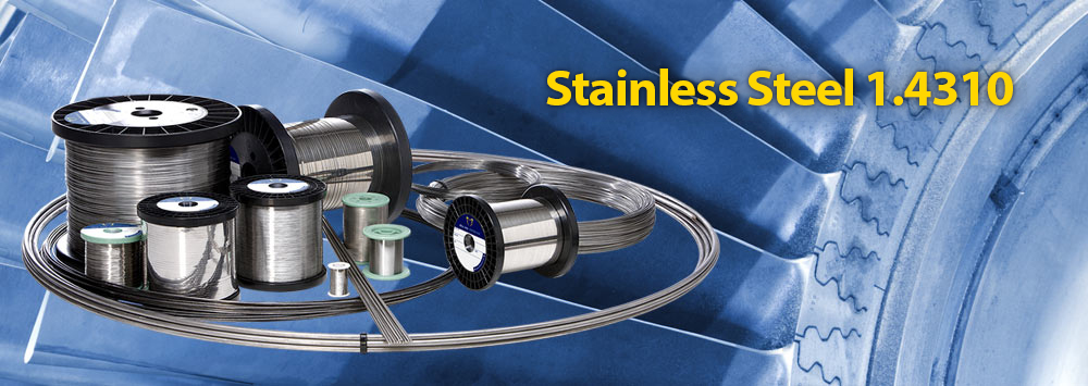 Stainless Steel1.4310